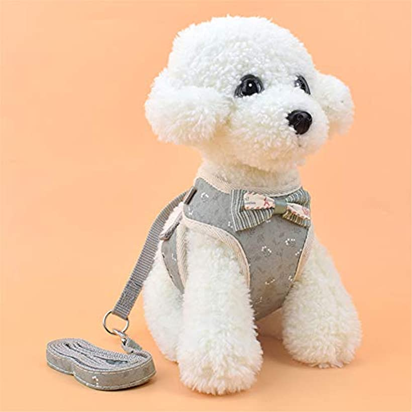 レキシコン助手憧れJIARUI 犬の胸のストラップ 猫のひも ペット ベスト牽引ロープ 小型犬 ペットチェストストラップ用品 猫用 ハーネス リードセット 犬猫兼用 超小型犬 小型犬 抜けない ソフト胸あて 軽量 (M,薄緑の花)