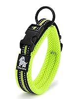 Kismaple犬の首輪 柔らかい通気性のあるメッシュ犬の首輪、3M夜間反射縞 サングラス/ミディアム/ラージアジャスタブルカラー(グリーン)のための犬の襟の外を歩く襟トレーニング (XL (50-55cm))
