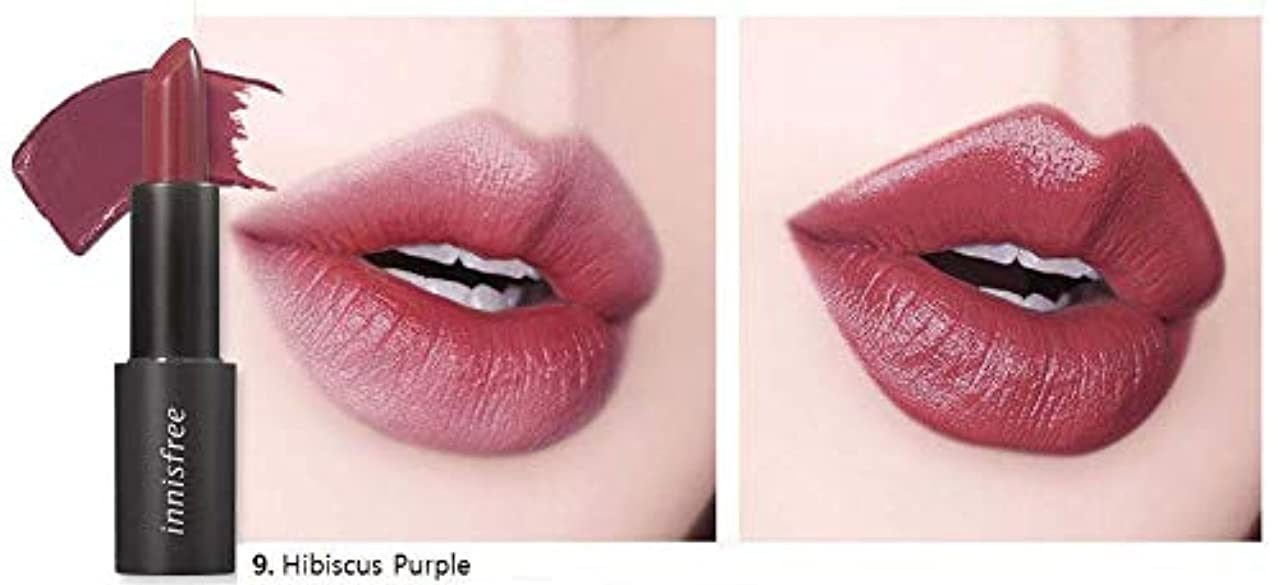 四分円バースかけがえのない[イニスフリー] innisfree [リアル フィット リップスティック 3.1g - 2019 リニューアル] Real Fit Lipstick 3.1g 2019 Renewal [海外直送品] (09. ハイビスカス パープル (Hibiscus Purple))