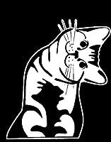 Cat–Whatcha Doin ?–I can haz ?–車ビニールデカールステッカー  6x 5in