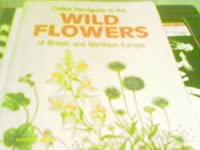 Handguide to the Wild Flowers of Britain and Northern Europe (Collins handguides)