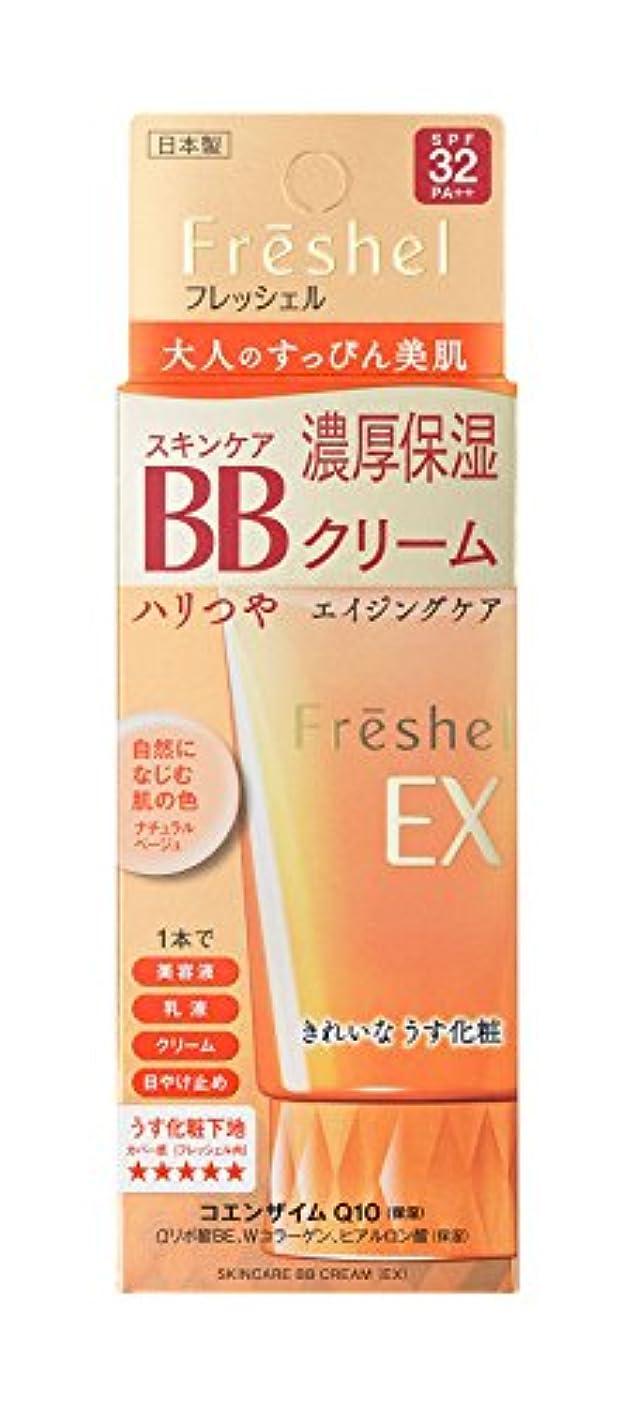 脇にメタリックスロープFreshel(フレッシェル) フレッシェル BBクリーム スキンケアBBクリーム EX 濃厚保湿 ナチュラルベージュ NB 単品