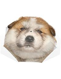 AOMOKI 折り畳み傘 折りたたみ傘 手開き 日傘 三つ折り 梅雨対策 晴雨兼用 UVカット 耐強風 8本骨 男女兼用 秋田犬 犬柄