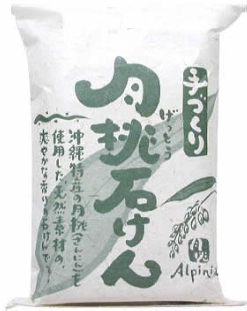 可動式インストールストリーム日本月桃 手づくり月桃石けん 100g