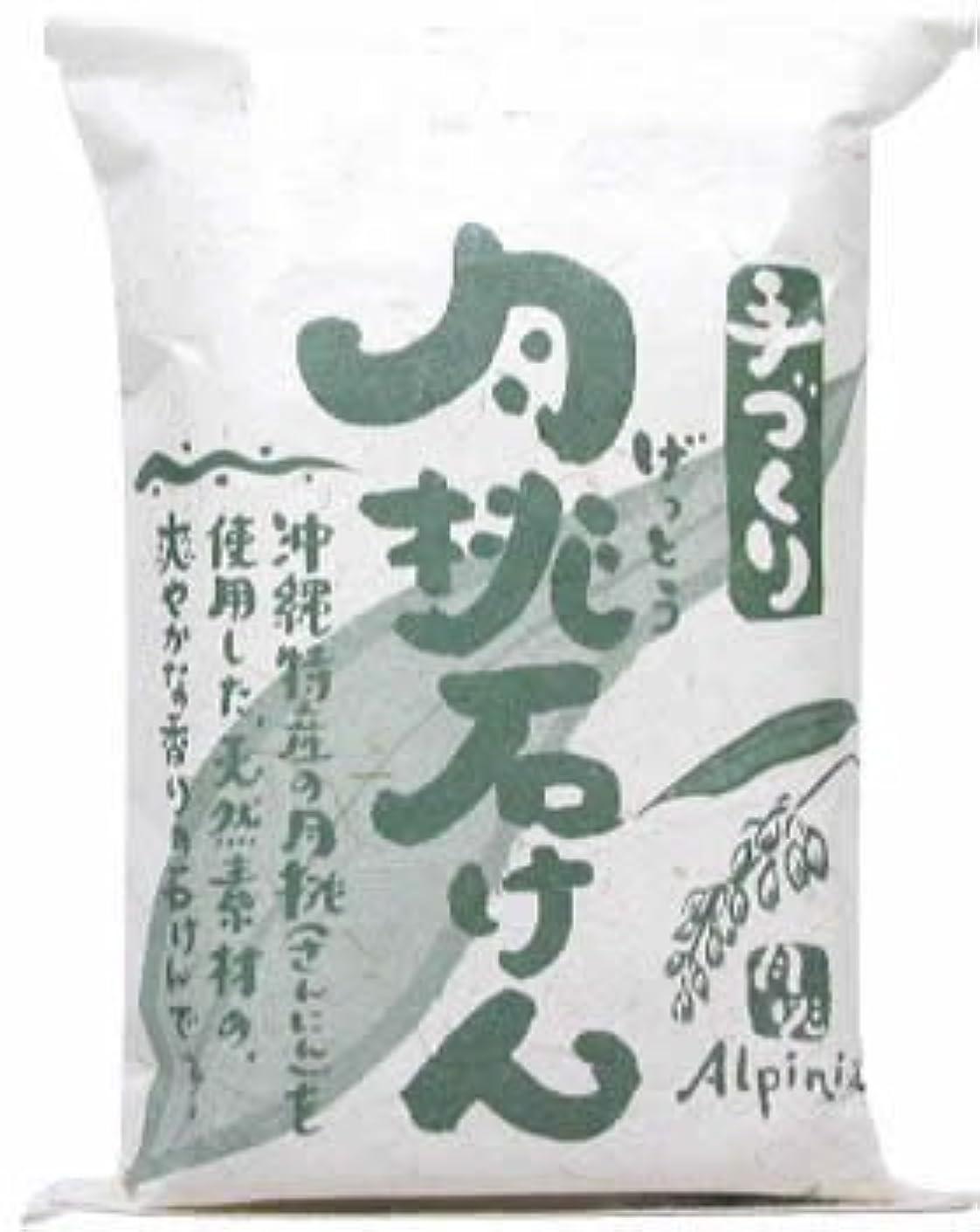 繁栄減少ほぼ日本月桃 手づくり月桃石けん 100g