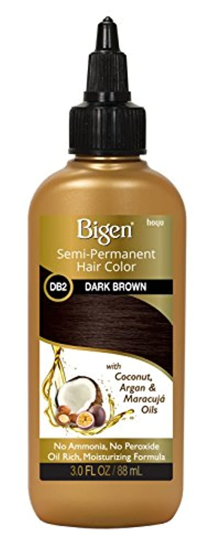 Bigen 半永久的ヘアカラー#Db2のダークブラウン3オンス(88Ml)(2パック)