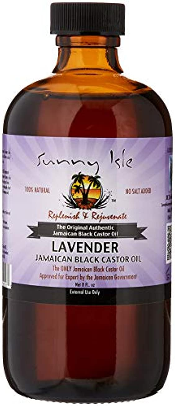 輝く赤ちゃん脆いJamaican Black Castor Oil Lavender 240ml