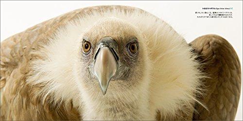 PHOTO ARK 鳥の箱舟 絶滅から動物を守る撮影プロジェクト【限定バッジ付き】