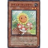 遊戯王カード ナチュル・サンフラワー DT05-JP018N