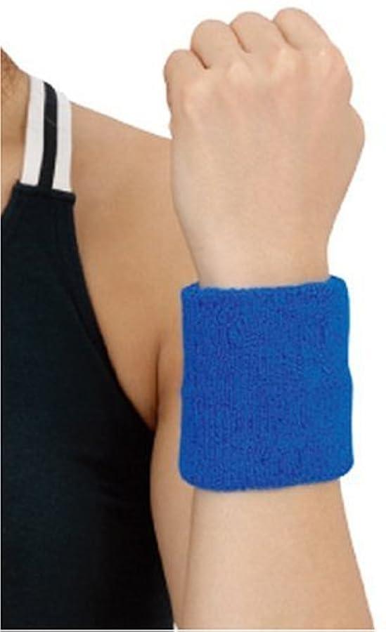 入手しますアカデミー寛大なD&M(ディーアンドエム) リストバンド [ WristBand ] 手首用 ブルー #240BL ブルー フリー