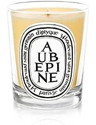 Diptyque Candle Aub?pine / Hawthorn 190g (Pack of 6) - DiptyqueキャンドルAub?pine/サンザシ190グラム (x6) [並行輸入品]