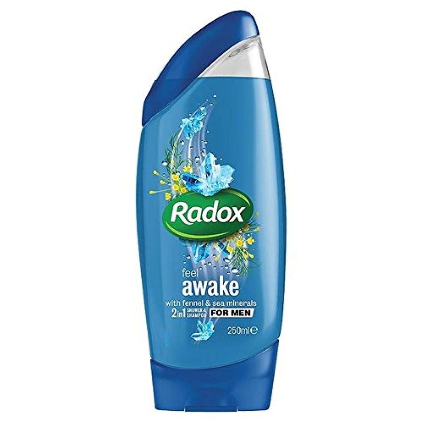 オピエート治療食物は男性の21シャワージェル250ミリリットルのために目を覚まし感じ x2 - Radox Feel Awake for Men 2in1 Shower Gel 250ml (Pack of 2) [並行輸入品]