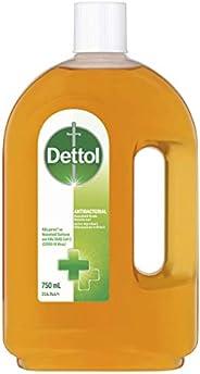 Dettol Antibacterial Household Grade Disinfectant Liquid, 750ml