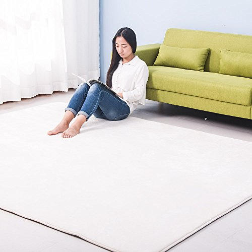 (OSJ)ラグ カーペット ラグマット 絨毯 マイクロファイ...