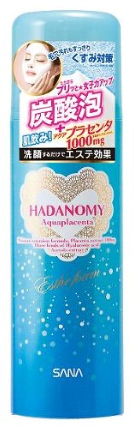 ハダノミー エステフォームp 110g【HTRC2.1】
