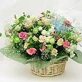 お祝いのバラのアレンジメント エクセレント【生花】【お祝い】【記念日】【誕生日】【フラワーギフト】【バラ】