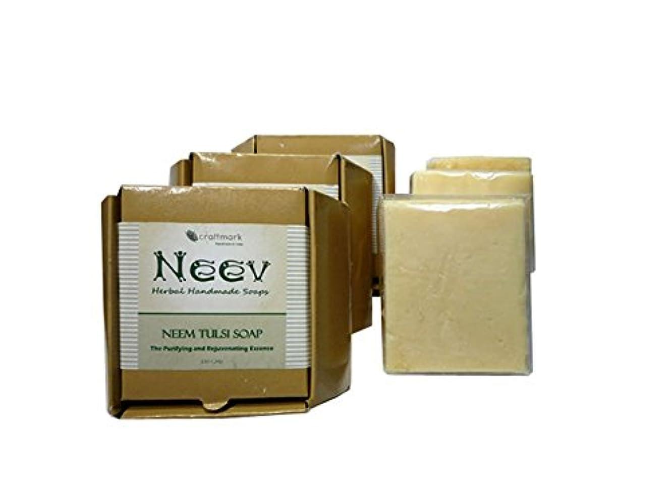 注ぎます辞書科学的手作り ニーブ ニーム トゥルシ ソープ 3個セット NEEV Herbal NEEM TULSI SOAP 3SET