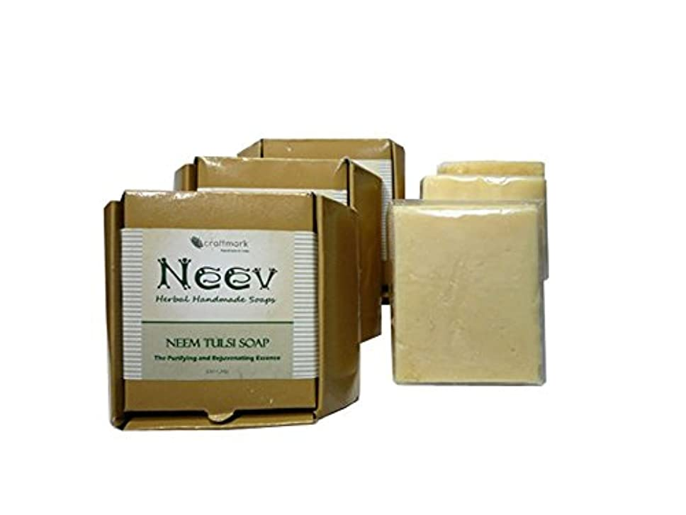 工場バケツブラシ手作り ニーブ ニーム トゥルシ ソープ 3個セット NEEV Herbal NEEM TULSI SOAP 3SET