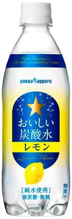 ポッカサッポロ おいしい炭酸水 レモン 500mlPET×24本入×(2ケース)