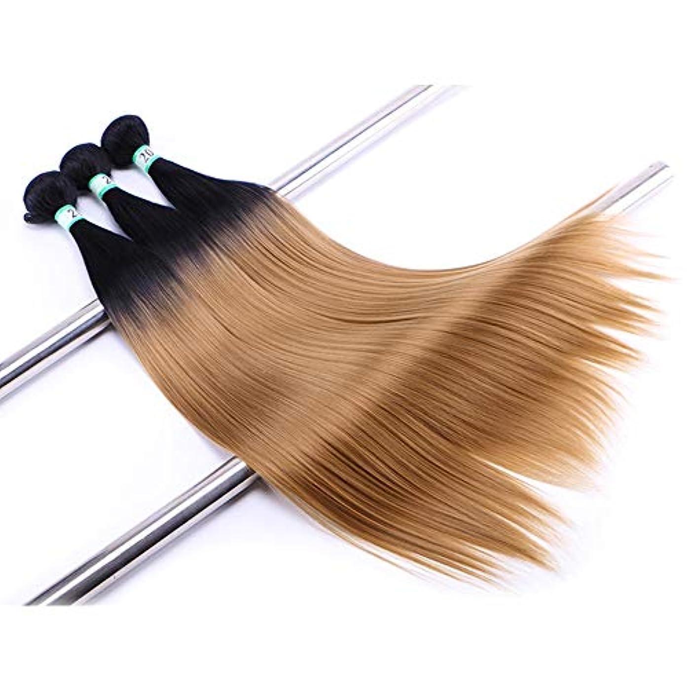 フェローシップ連続したリボンHOHYLLYA ヘアエクステンション織りバンドルブロンドナチュラルヘア横糸ストレートクリップなし(3バンドル)合成髪レースかつらロールプレイングウィッグロングとショート女性自然 (色 : Blonde, サイズ : 20inch)