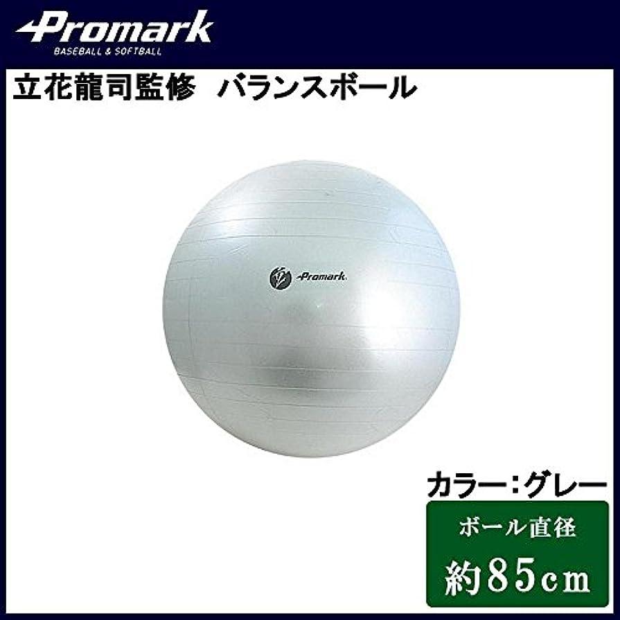 骨髄近く明確なPromark プロマーク 立花龍司監修 バランスボール 約85cm グレー TPT0275
