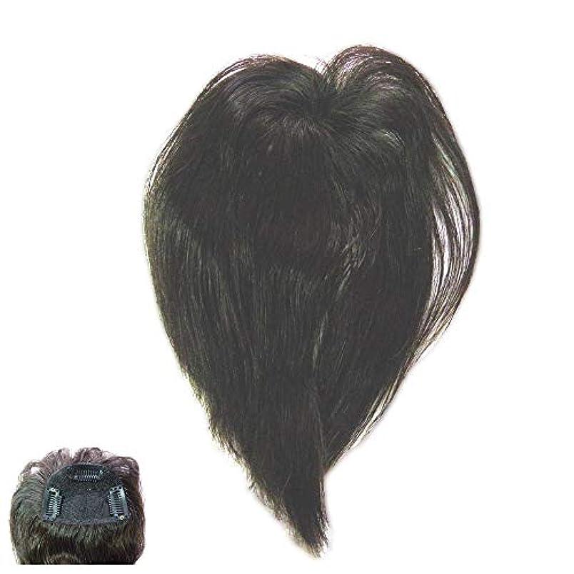 擁する噴火組み込む(パッケージ不良)ファッション?トップウイッグ★人毛と耐熱形状ファイバーのデラックス仕様 Type13