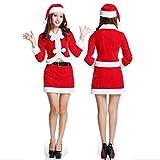 (ショコラ)chocola 選べるサンタコスプレ クリスマスパーティー フリーサイズ レディース サンタクロース (Cタイプ)