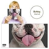 Animal Mask Book Cover アニマルマスクブックカバー [ Bulldog ]VRT42108