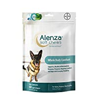 DVM Pharmaceuticals Alenza Chew Tablet for Dog, Medium/Large, 60 Tablets by DVM Pharmaceuticals