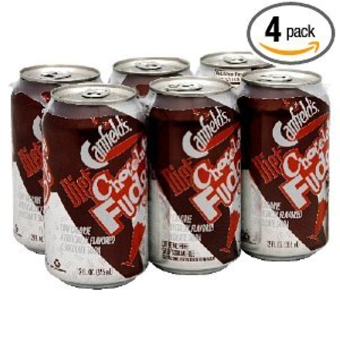 キャンフィールド社 チョコレートファッジダイエットソーダー24本海外直送品