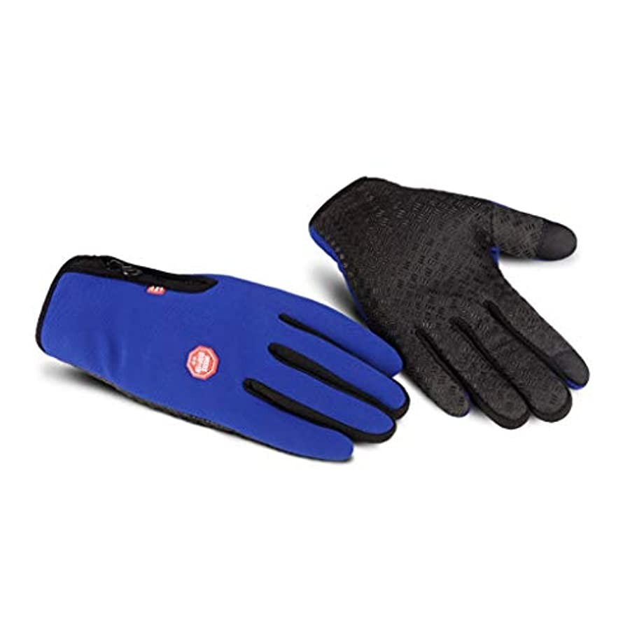 草誘惑する引っ張る手袋の男性の秋と冬の自転車電動バイクの女性のタッチスクリーンはすべて防風ノンスリップ暖かい冬のコールドプラスベルベット弾性手袋を意味する (色 : 青)