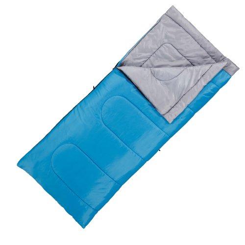 Coleman(コールマン) パフォーマー/15 ブルー [最低使用温度15度] 170S0221J