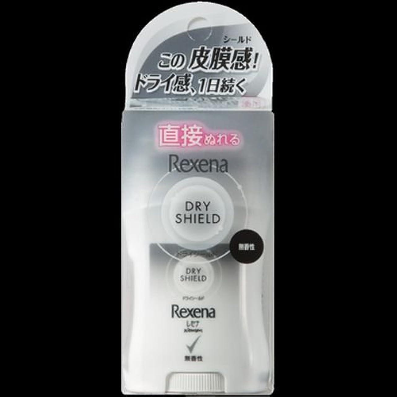 うなり声ロッカー激怒【まとめ買い】レセナ ドライシールド パウダースティック 無香性 20g ×2セット