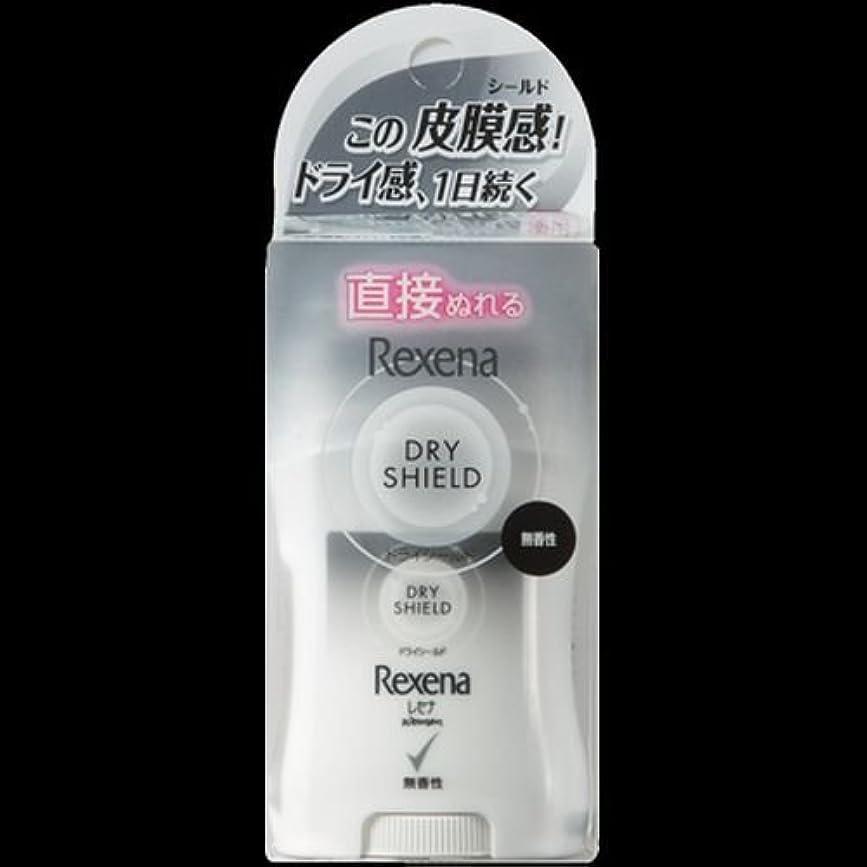 。マント不承認【まとめ買い】レセナ ドライシールド パウダースティック 無香性 20g ×2セット