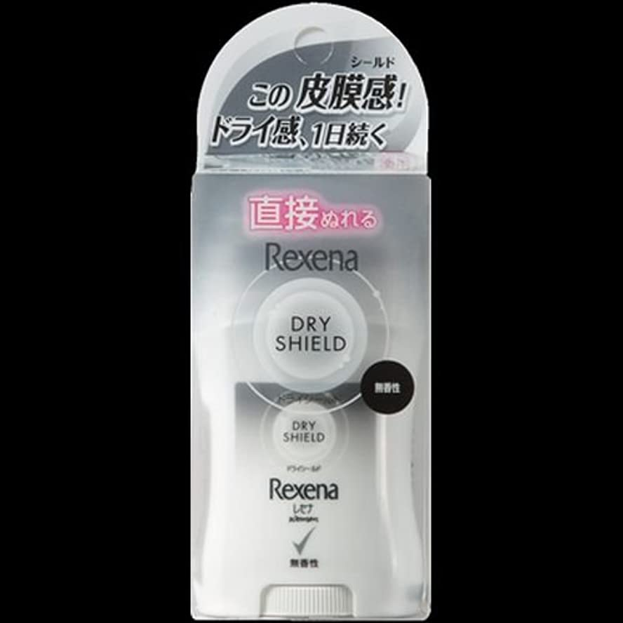 風邪をひく作物媒染剤【まとめ買い】レセナ ドライシールド パウダースティック 無香性 20g ×2セット