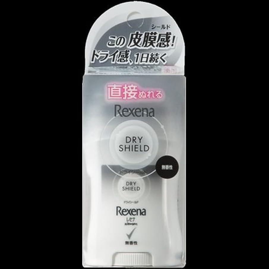 養う蒸留受取人【まとめ買い】レセナ ドライシールド パウダースティック 無香性 20g ×2セット