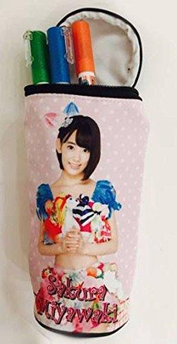 AKB48 島崎遥香 限定 ペンケース