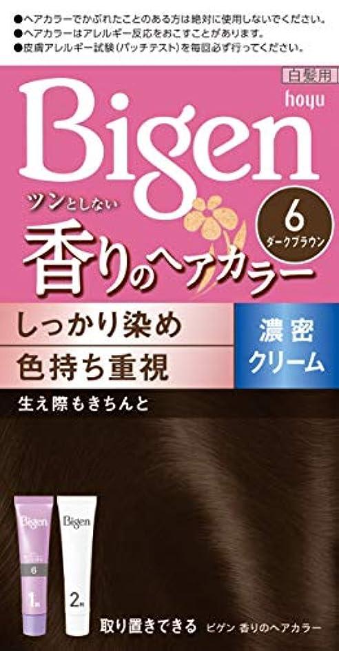 錫ポータル満足させるホーユー ビゲン香りのヘアカラークリーム6 (ダークブラウン) 1剤40g+2剤40g [医薬部外品]