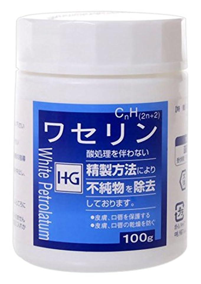直感拘束卒業大洋製薬 ワセリンHG 100g