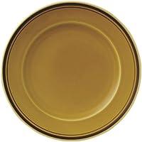 アメボーダー 27cm ディナー皿