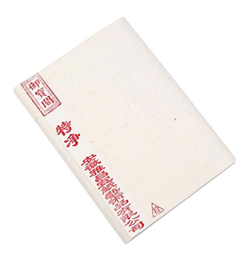 クラス特定の原因100枚の書道の練習のライスペーパーの空白の未加工Xuanペーパー