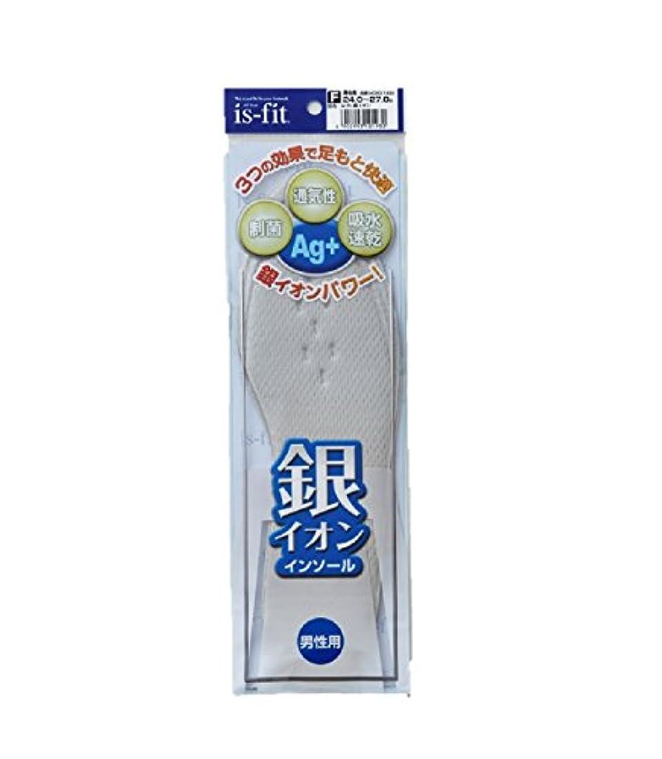 泥伸ばす心配するis-fit 銀イオンインソール 男性用