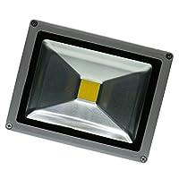 Fenteer 屋外 洪水灯 ガレージ ドライブウェイ セキュリティ投光器 アルミニウムと強化ガラス 全6タイプ 省エネ - ウォームホワイト20W