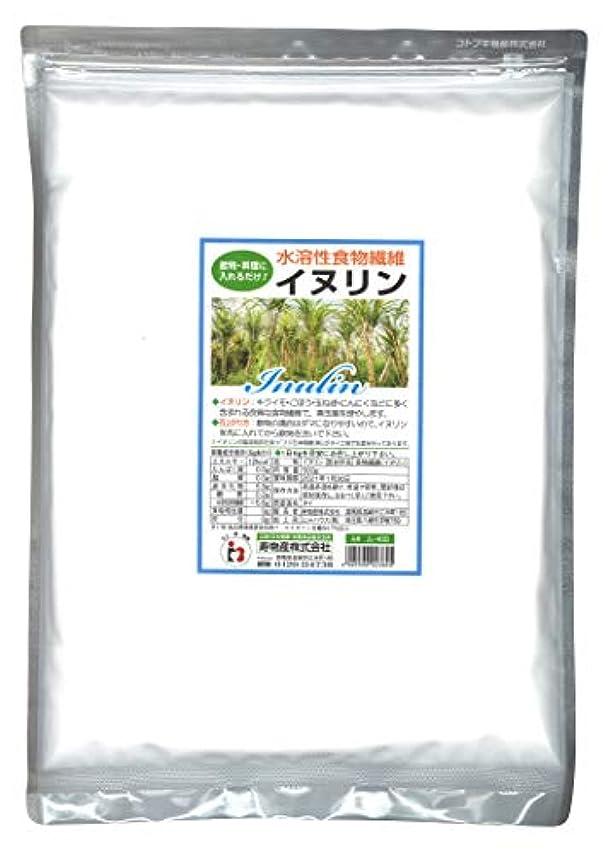 火傷花嫁旋回イヌリン 500g 水溶性食物繊維 菊芋に多く含まれる食物繊維