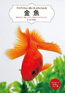金魚:飼育の仕方、種類、水作り、病気のことがすぐわかる! (アクアリウム☆飼い方上手になれる!)