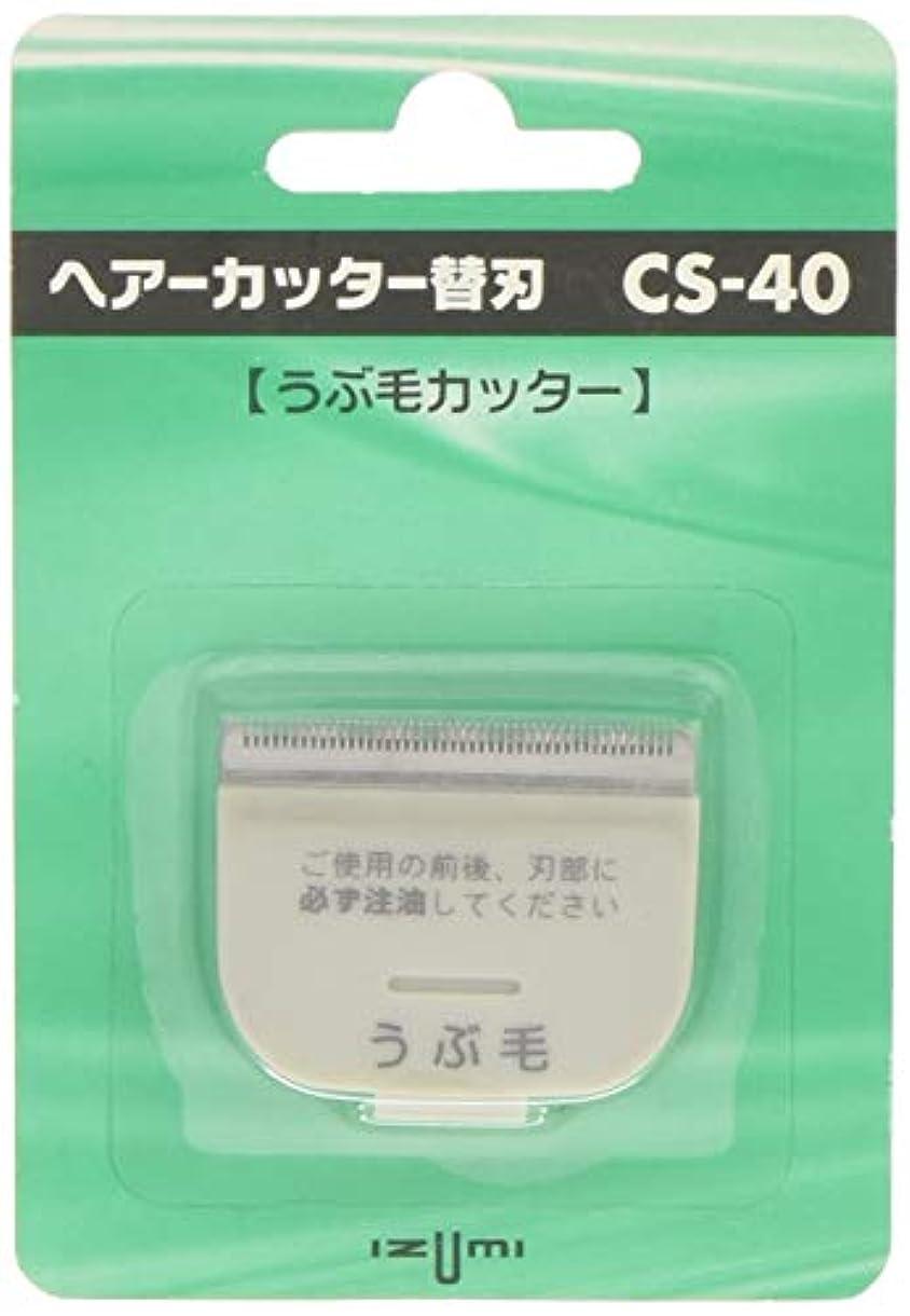 コンテンツ感じ普遍的なIZUMI ヘアーカッター用替刃 うぶ毛カッター CS-40