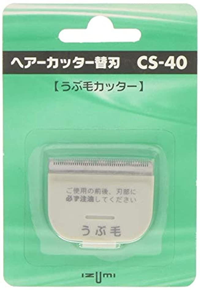 雑種お勧め想定するIZUMI ヘアーカッター用替刃 うぶ毛カッター CS-40