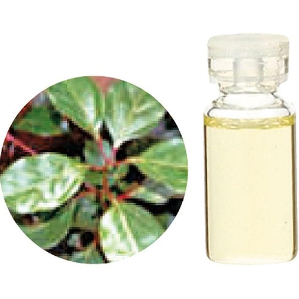 ブラインド広くお誕生日HerbalLife ラベンサラ 10ml