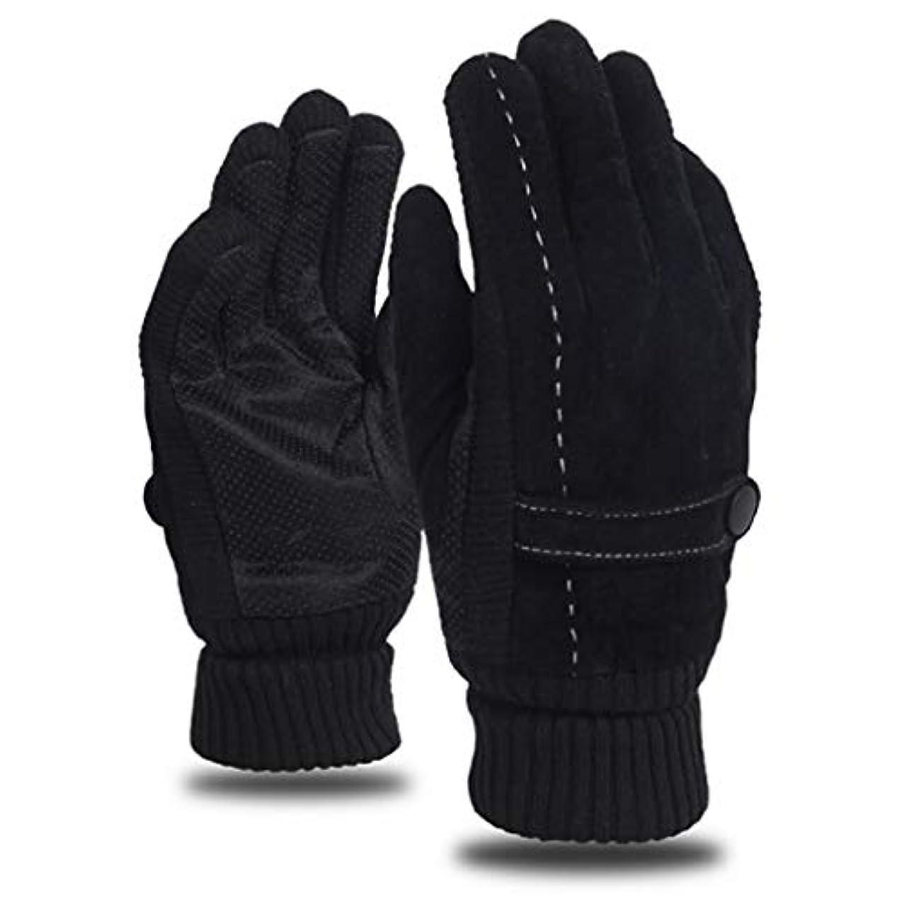 くま和解するモットーレザーグローブメンズウィンライディングプラスベルベット厚手暖かいドライビングアウトドアオートバイ防風コールドノンスリップメンズコットン手袋 (色 : 黒)