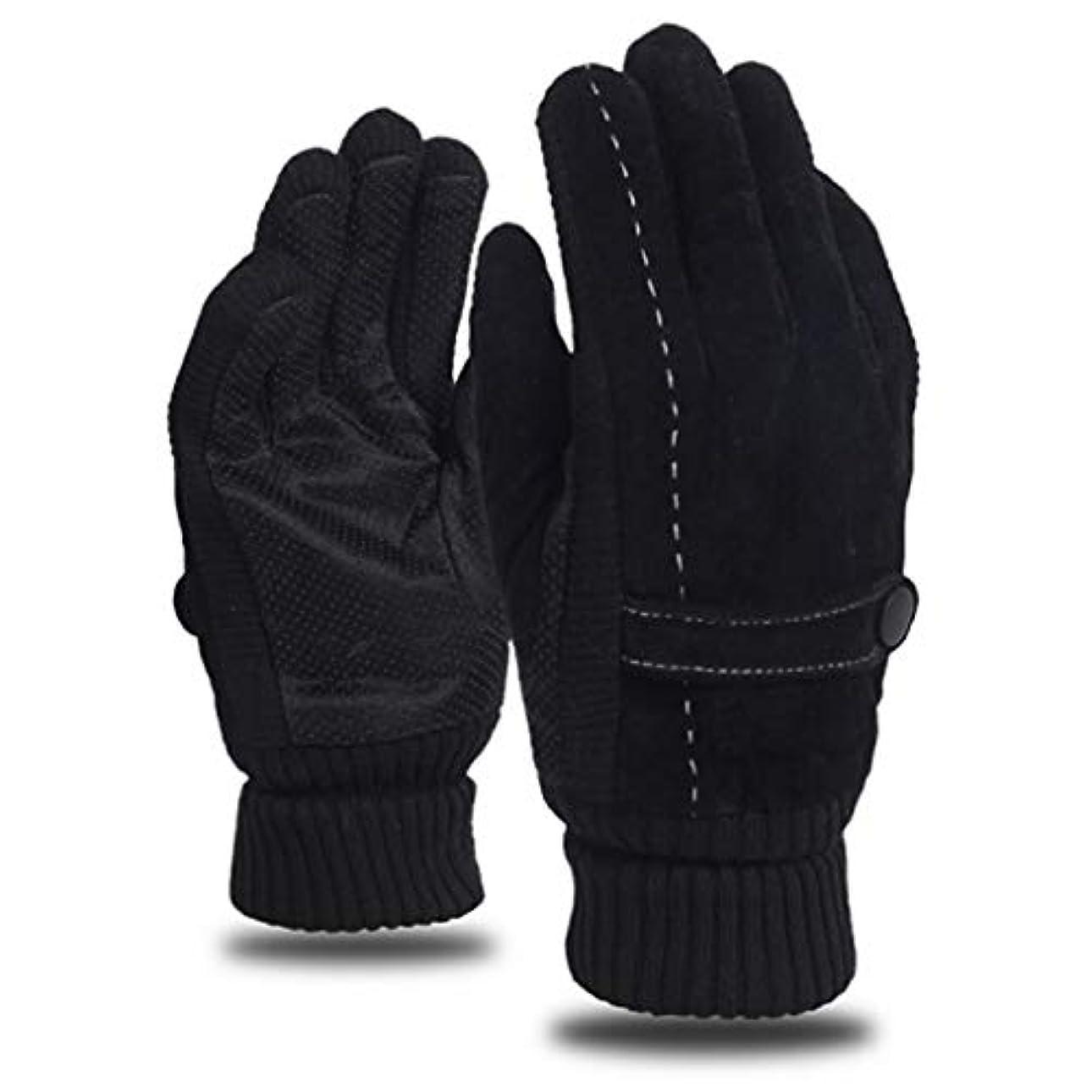 乱闘分岐する明るいレザーグローブメンズウィンライディングプラスベルベット厚手暖かいドライビングアウトドアオートバイ防風コールドノンスリップメンズコットン手袋 (色 : 黒)
